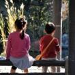子供を使って居留守を使う家賃滞納者の対応方法